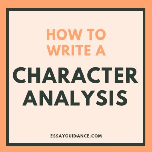 character analysis essay example