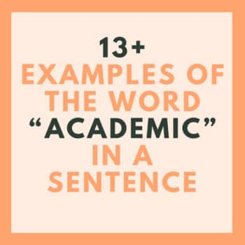 academic in a sentence
