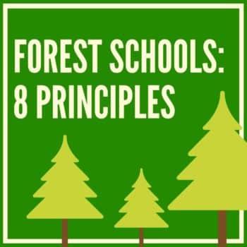 forest school curriculum (8 principles)