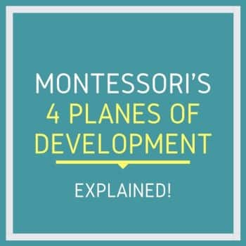 four stages of development by Montessori