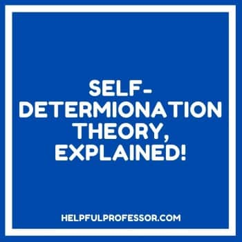 self determination theory quote in a box